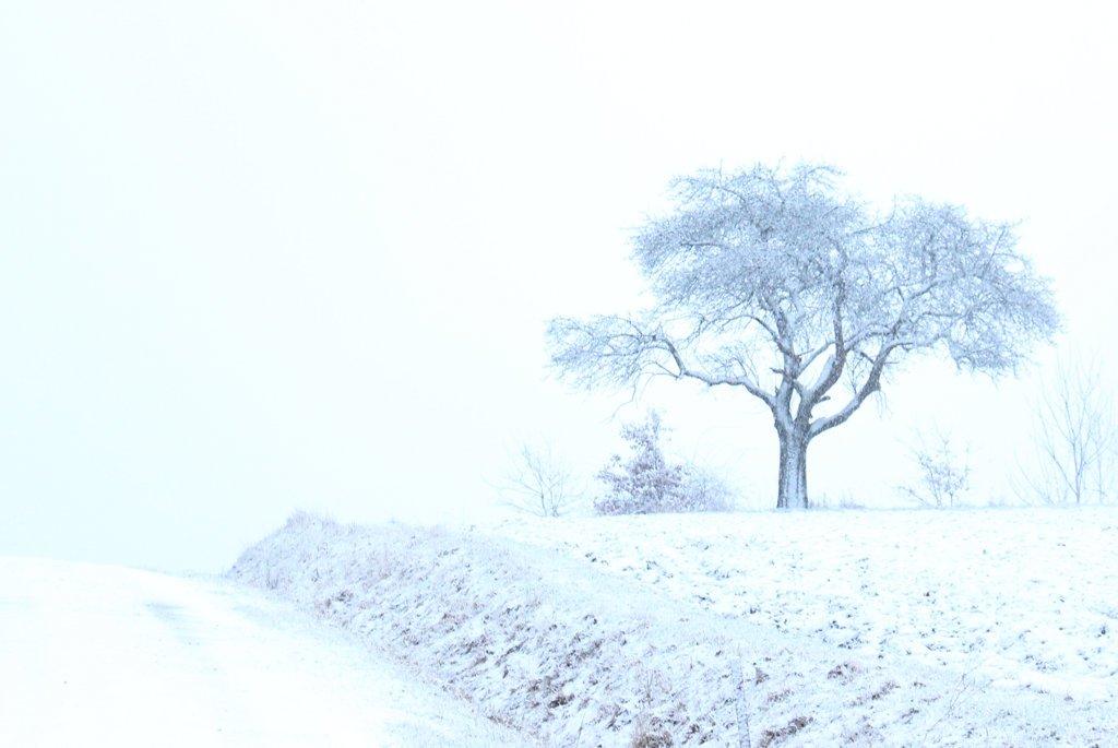 Frostiges Winterwetter und DIY Untersetzer