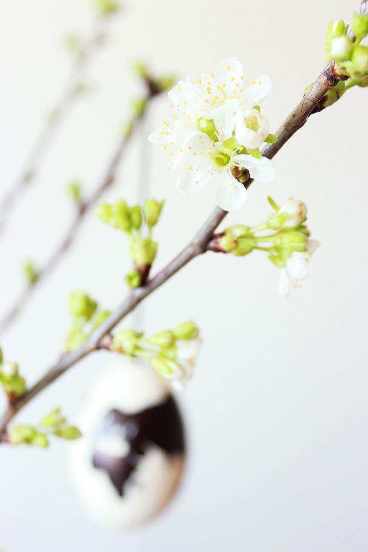 Blühende Apfelzweige mit Ostereier Frühlingsdeko