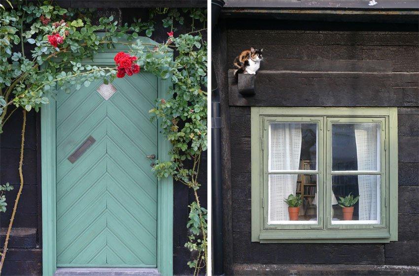 bunte Holzhäuser in Visby