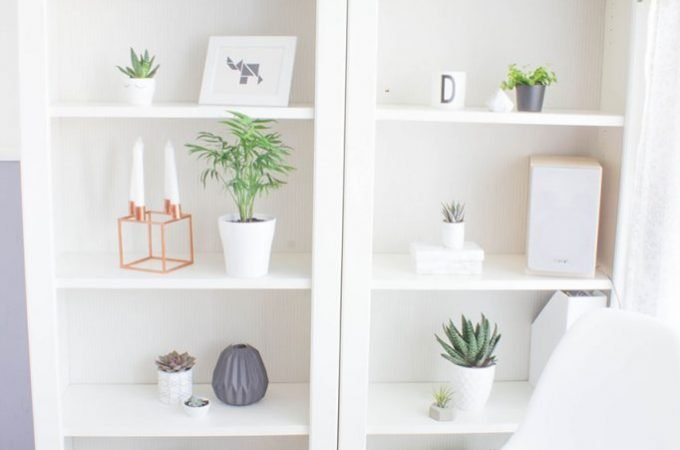 Ein Regal voller schöner Pflanzen und Deko… was wär das toll!