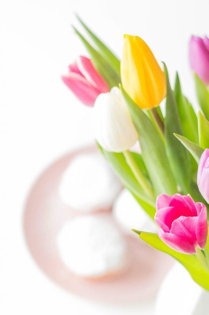 Tulpen und Berliner