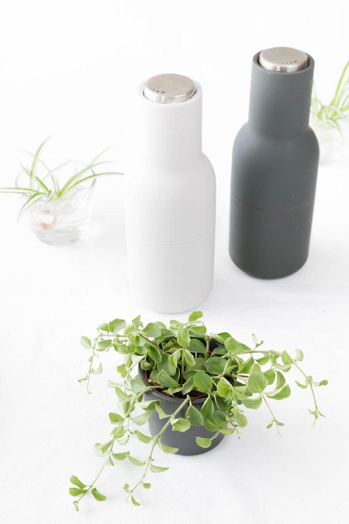 Bottle Grinder und Tischdeko