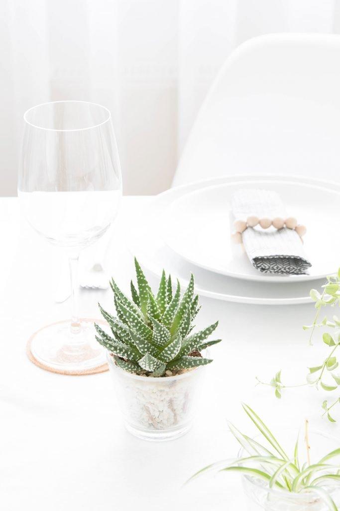 Sukkulenten auf dem Tisch
