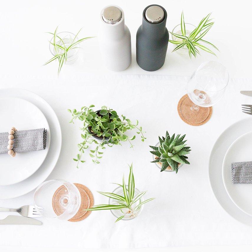 Grüne Pflanzen als Tischdeko