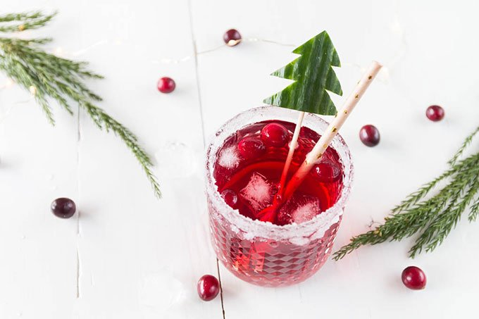 Weihnachtlicher Cranberry Gin Tonic