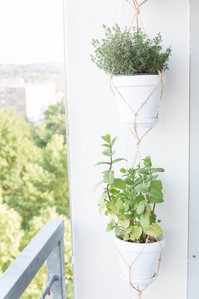 10 Tipps für einen gemütlichen Balkon - Pflanzen auf dem Balkon